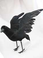 halloween-decoration-crow.jpg